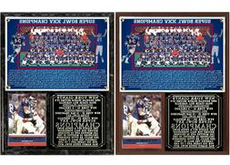1990 New York Football Giants Super Bowl XXV Champions Photo